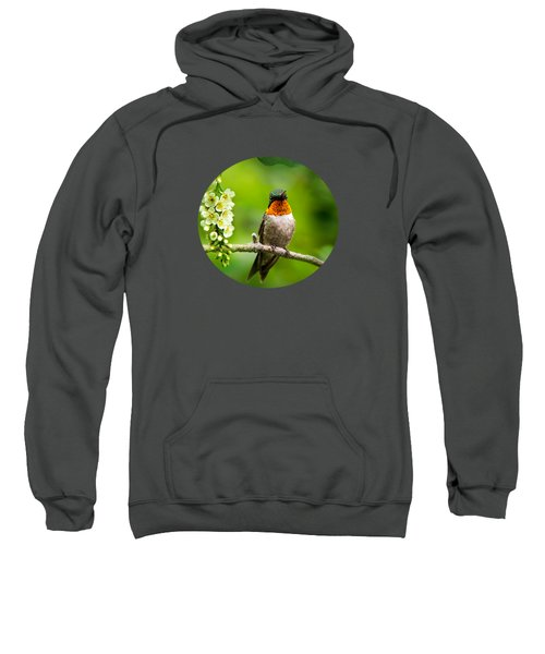 Male Ruby-throated Hummingbird With Showy Gorget Sweatshirt by Christina Rollo
