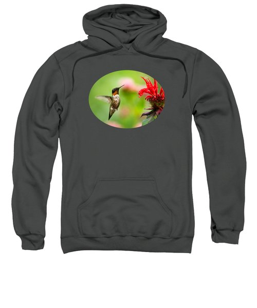 Male Ruby-throated Hummingbird Hovering Near Flowers Sweatshirt