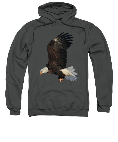 Fly By Sweatshirt