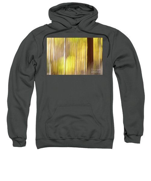 Aspen Blur #1 Sweatshirt
