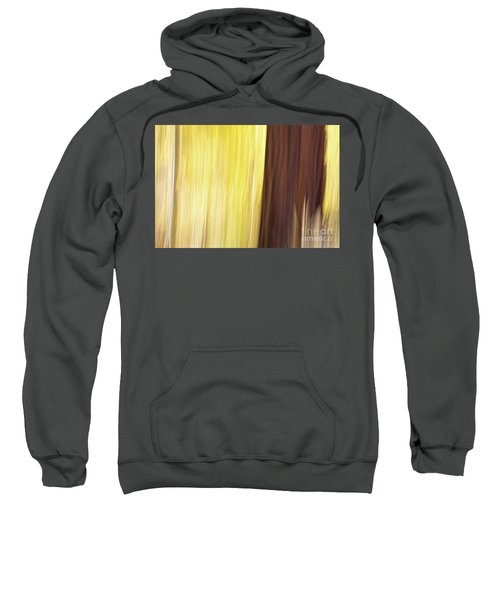 Aspen Blur #3 Sweatshirt