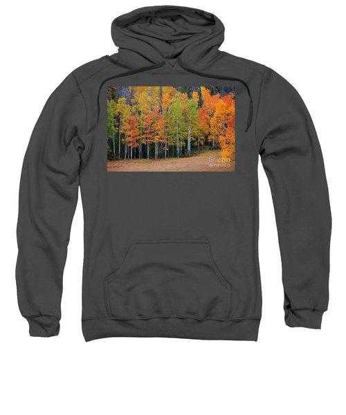 Aspen Color Sweatshirt