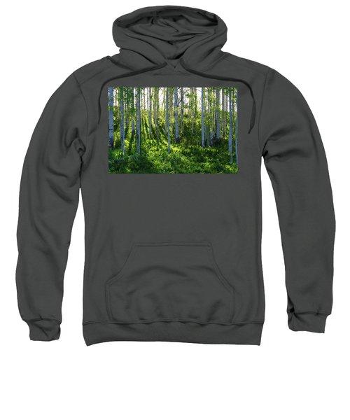 Aspen Morning 1 Sweatshirt