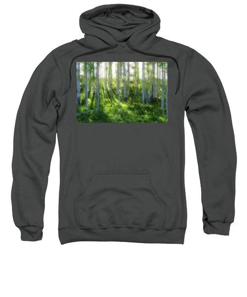 Aspen Morning 3 Sweatshirt