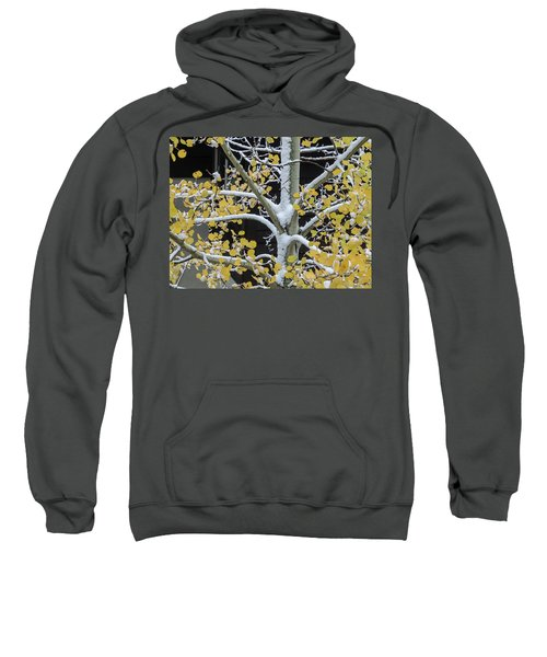 Aspen Snow Sweatshirt