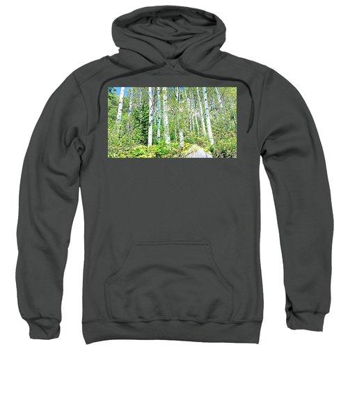 Aspen Splender Steamboat Springs Sweatshirt