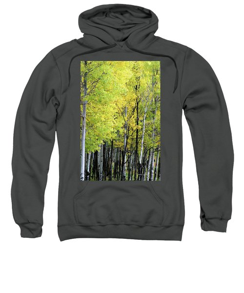 Aspen Splendor Sweatshirt