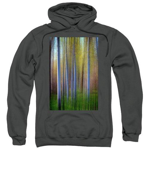 Aspens In Springtime Sweatshirt