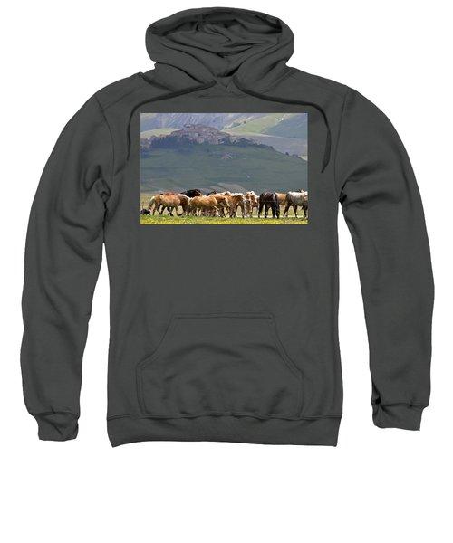 Castelluccio Di Norcia, Parko Nazionale Dei Monti Sibillini, Italy Sweatshirt