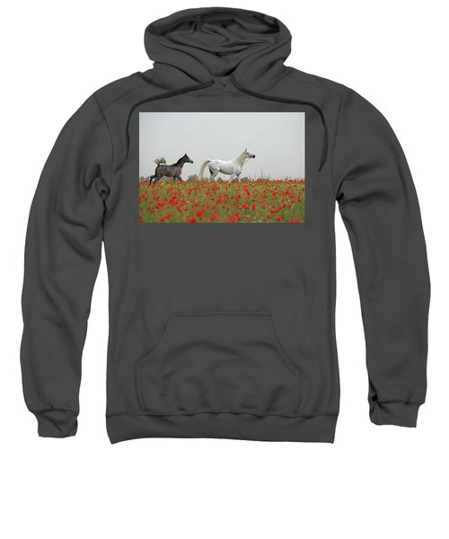 At The Poppies' Field... Sweatshirt by Dubi Roman