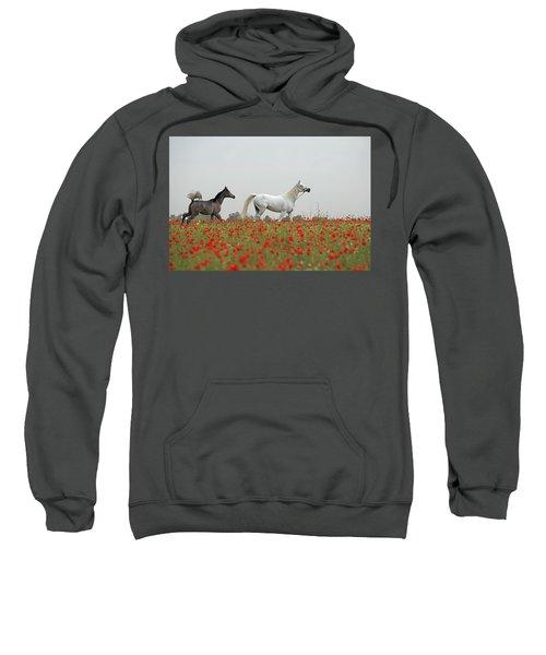 At The Poppies' Field... Sweatshirt