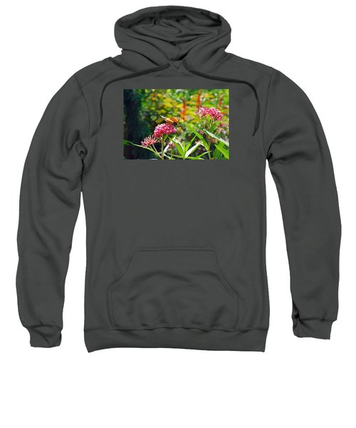 August Monarch Sweatshirt