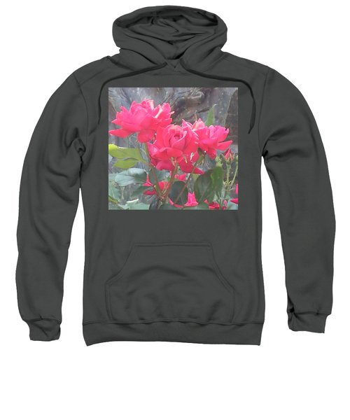 Austin Roses Sweatshirt
