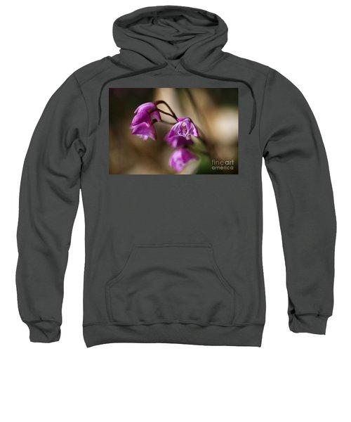 Australia's Native Orchid Small Dendrobium Sweatshirt