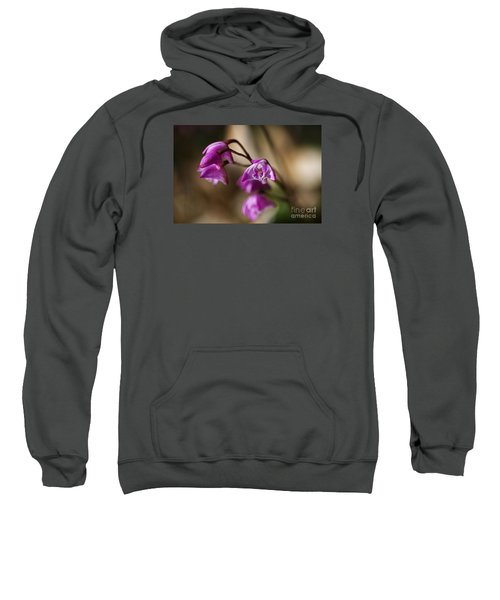 Australia's Native Orchid Small Dendrobium Sweatshirt