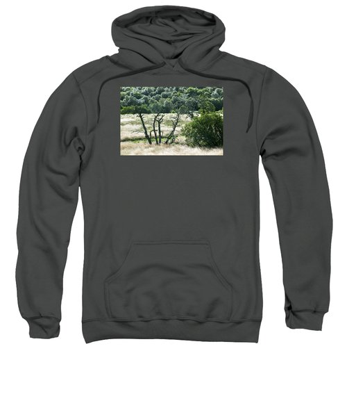 Autumn And Grass In Isle Of Skye, Uk Sweatshirt