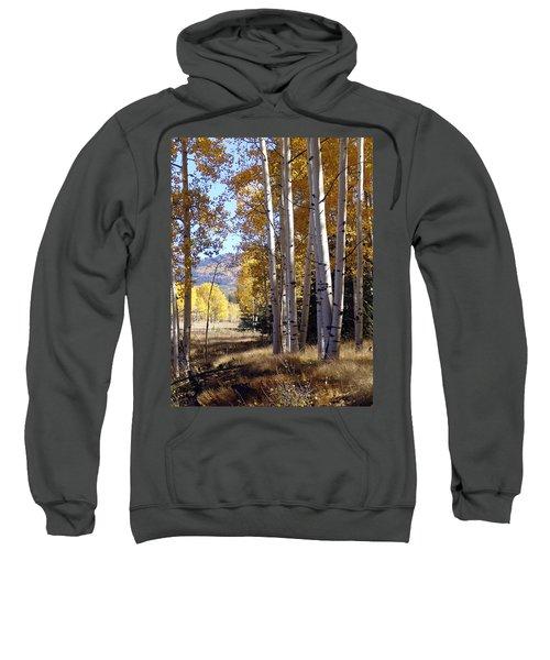 Autumn Chama New Mexico Sweatshirt