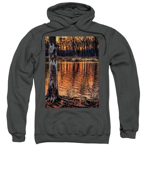 Autumn Gold Sweatshirt