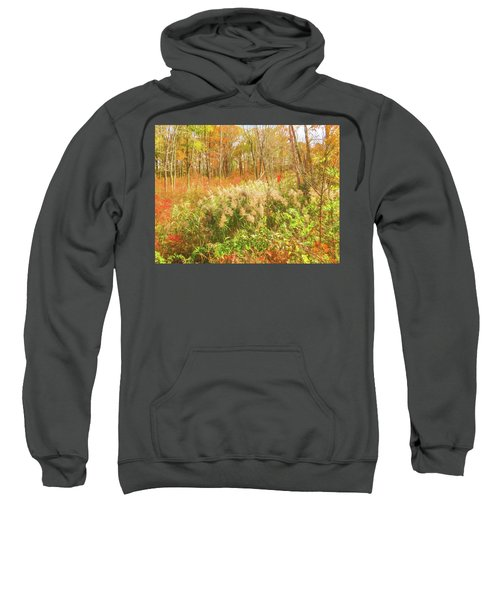 Autumn Landscape Sweatshirt