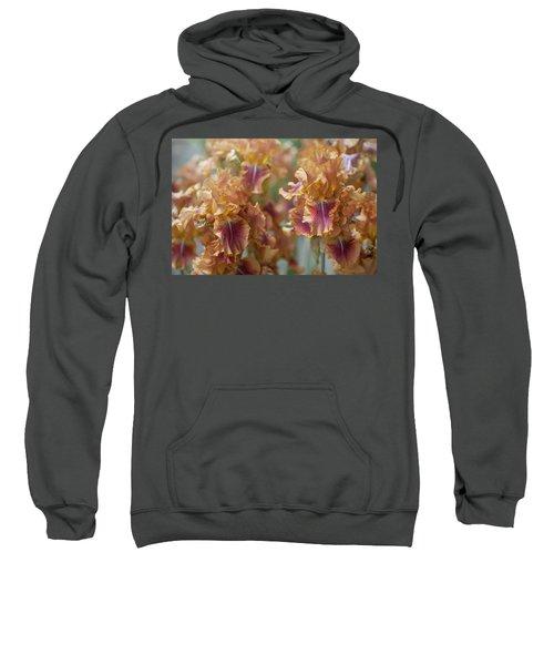 Autumn Leaves Irises In Garden Sweatshirt