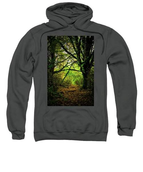 Sweatshirt featuring the photograph Autumn Light by David Patterson