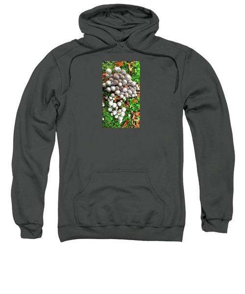 Autumn Mushrooms Sweatshirt by Nareeta Martin