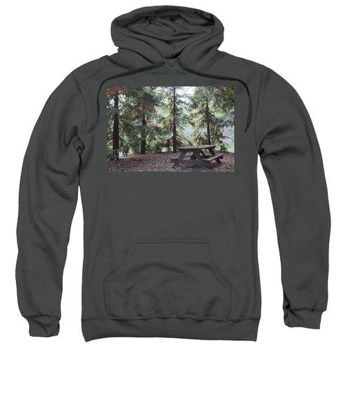 Autumn Picnic In The Woods  Sweatshirt