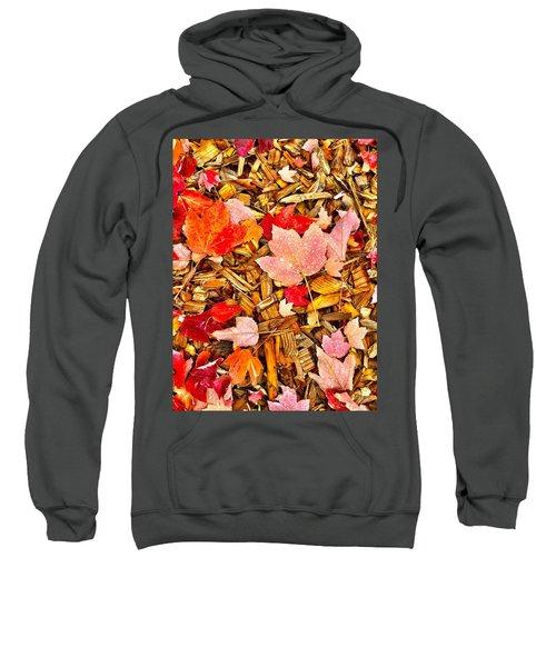 Autumn Potpourri Sweatshirt