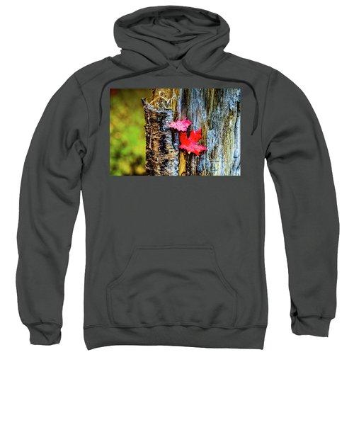 Autumn Silence Sweatshirt
