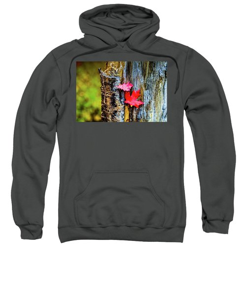 Autumn Silence Sweatshirt