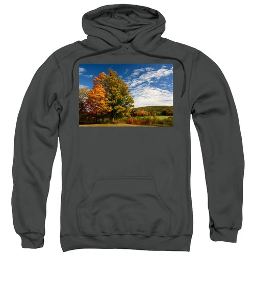 Autumn Tree On The Windham Path Sweatshirt