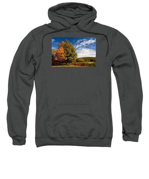 Autumn Tree On The Windham Path Sweatshirt