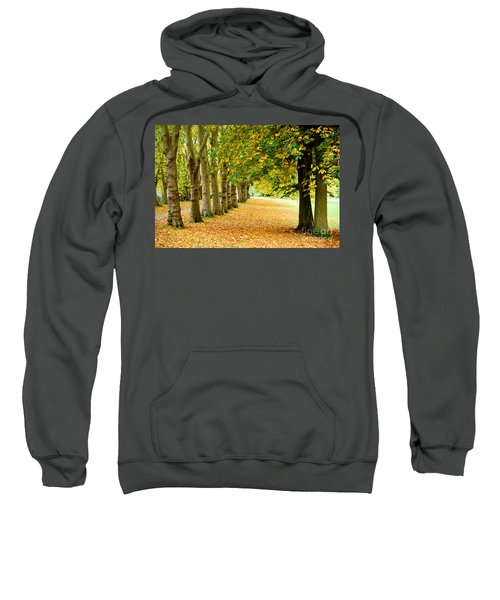 Autumn Walk Sweatshirt