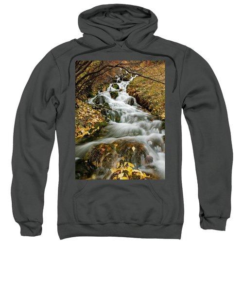 Autumn Waterfall Sweatshirt