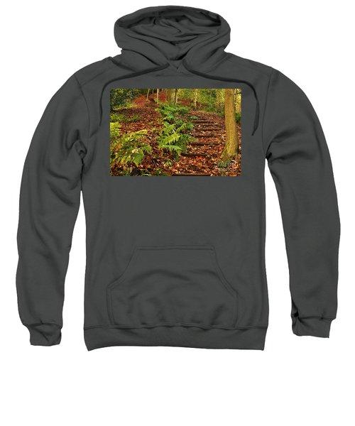 Autumn Woodland Path Sweatshirt