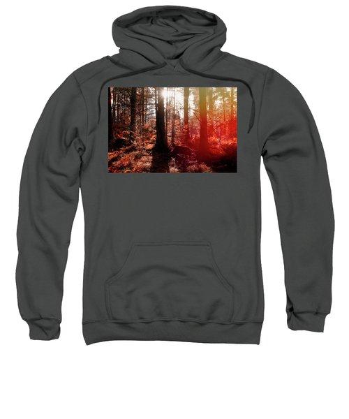 Autumnal Afternoon Sweatshirt