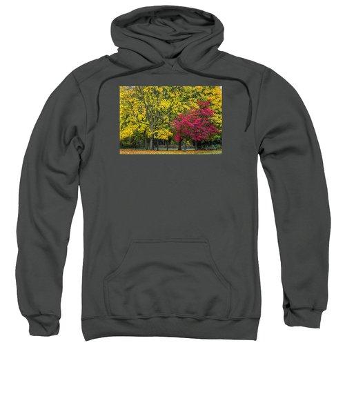 Autumn's Peak Sweatshirt