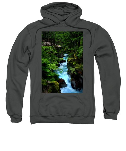 Avalanche Creek Waterfalls Sweatshirt