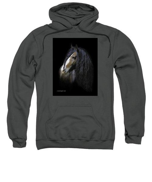 Awestruck Sweatshirt