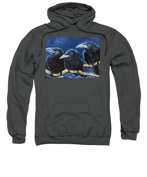 Baby Crows Sweatshirt