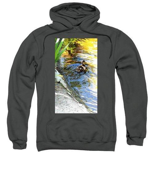 Baby Duck Sweatshirt