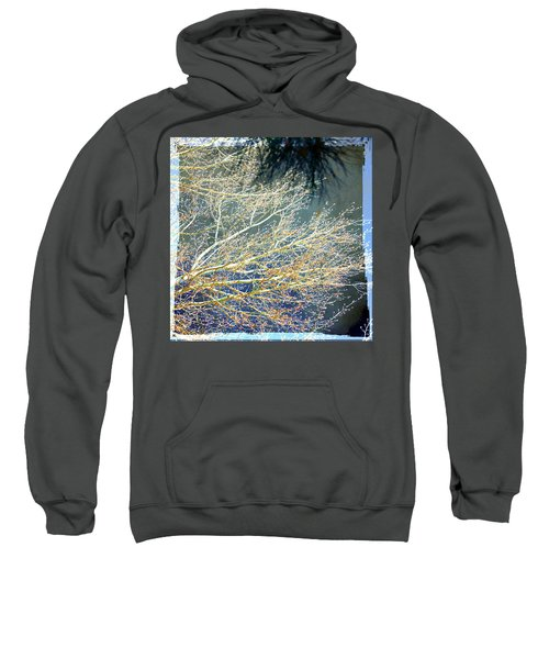 Baby It's Cold Out There Sweatshirt