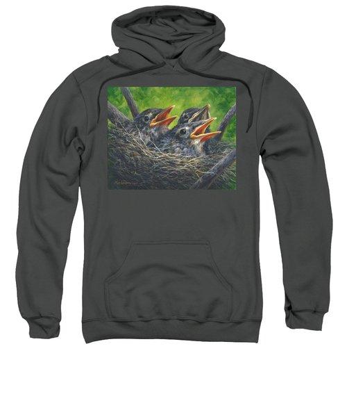 Baby Robins Sweatshirt
