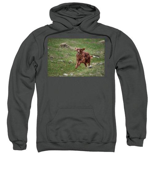 Back In Game Sweatshirt