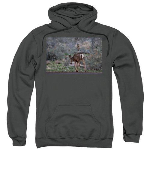 Back Into The Woods - 2 Sweatshirt