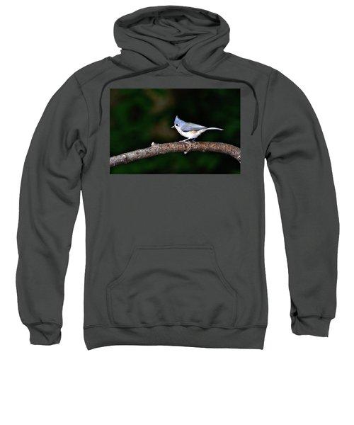 Back Yard Bird Sweatshirt