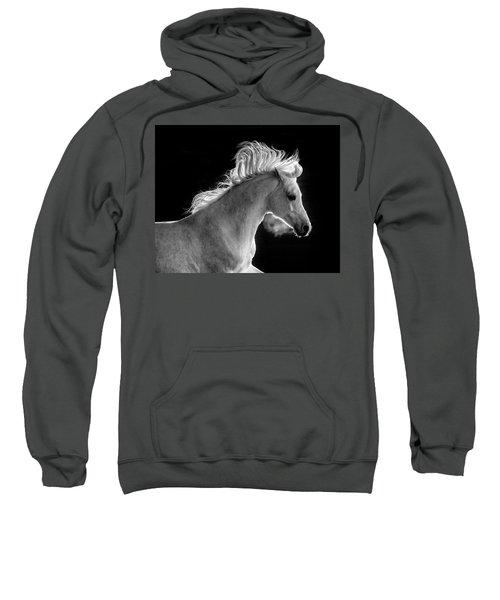 Backlit Arabian Sweatshirt