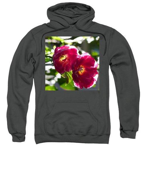 Backlit Roses In My Garden Sweatshirt by Anna Porter