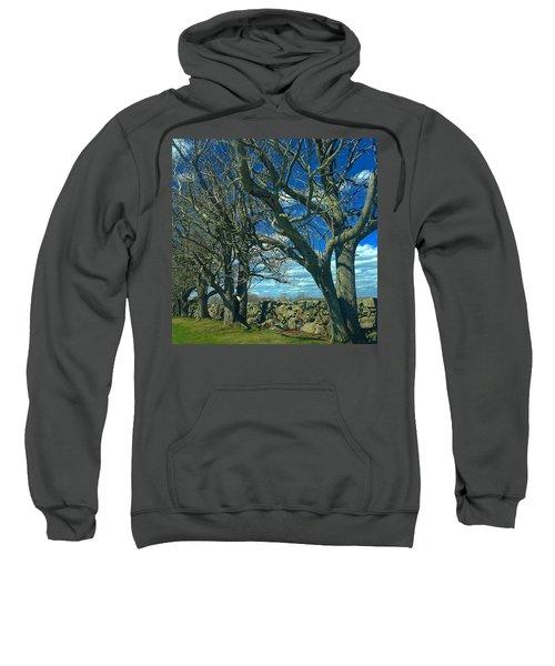 Backroads Scenery Sweatshirt