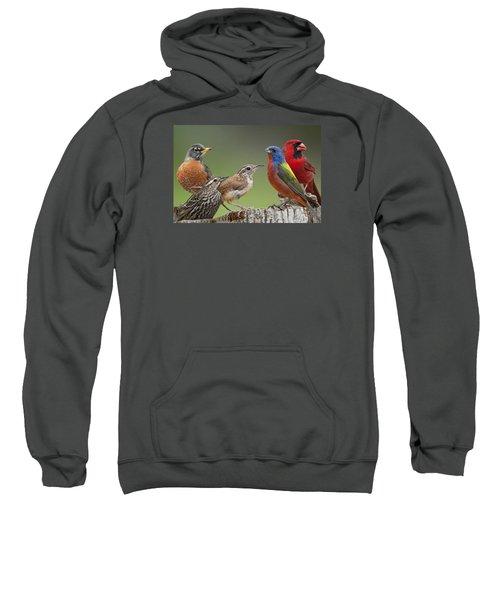 Backyard Buddies Sweatshirt